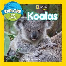 explore my world koalas national geographic store