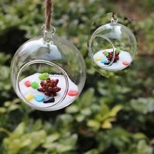 hanging glass globe terrarium ebay