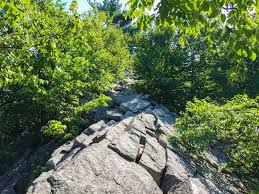 Appalachian Trail Map Pennsylvania by Pennsylvania Must See Day Hikes On The Appalachian Trail The Trek