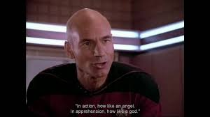 Jean Luc Picard Meme - what a piece of work is man youtube