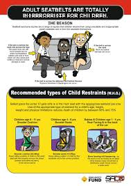 cartoon car back new child car seat law news24