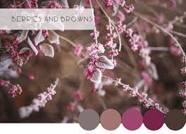 winter color schemes stunning winter color combinations catherine french design