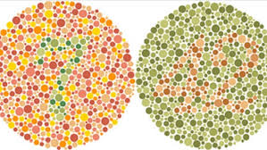 How To Test For Color Blindness Give Yourself A Color Vision Test Komando Com