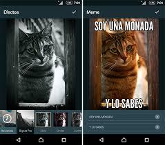 Editor De Memes - las 5 mejores aplicaciones gratuitas para retocar fotos en el