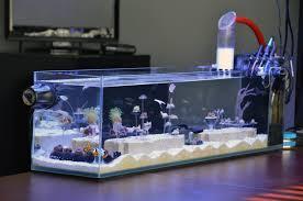 Floating Aquascape Reef2reef Saltwater And Reef Aquarium Forum - show your nano aquarium here page 11 reef2reef saltwater and