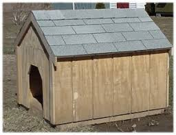 shafer u0026 sons dog house westmoreland new york oneida county
