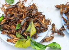 you are eating bugs without even knowing it eat this not that