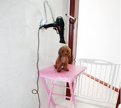 dog grooming tables for small dogs small grooming table arm beblincanto tables affordable dog