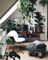 Interior Plant Wall Best 25 Apartment Plants Ideas On Pinterest Air Cleaning Plants