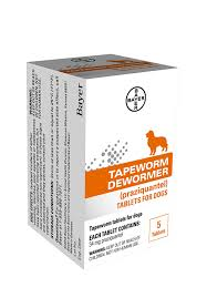 amazon com bayer tapeworm dewormer for cats 6 weeks and older