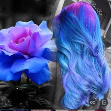 beautiful pink and blue hair color by paula biek hair inspiration