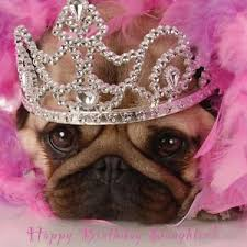 pug birthday card ebay