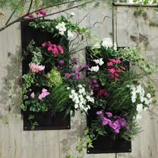Garden Wall Planter by Compare Prices On Vertical Wall Planters Online Shopping Buy Low