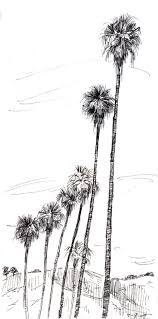 works in progress on location palm trees