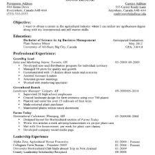resume for administrative customer service susan ireland resumes