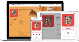 apple music get an apple music student subscription apple support