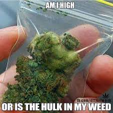 Funny Memes About Weed - weed memes marijuana memes