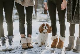 ugg sale hautelook hurry up to 54 ugg australia boots and shoes for the family