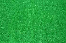 Outdoor Turf Rug by Indoor Carpet Grass How To Transplant Carpet Grass U2013 Home Design