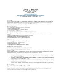 Security Jobs Resume by Sample Security Manager Resume