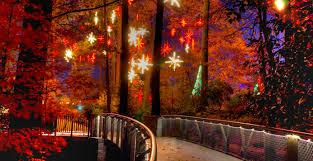 Atlanta Botanical Gardens Groupon Garden Lights Nights At The Atlanta Botanical Garden