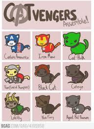 Avengers Memes - the avengers memes teganashley
