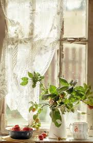 Apple Kitchen Curtains by 586 Best Window Views Images On Pinterest Windows Doors And Window