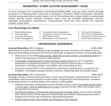 resume for accounts executive picturesque account resume format of accounts executive free