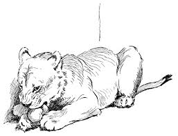 big cat coloring pages coloring free coloring pages