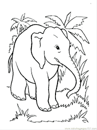 coloring pages elephant and piggie free elephant coloring pages 9 elephant coloring pages free sle