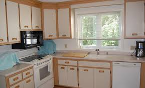 Replacement Kitchen Cabinet Doors With Glass Inserts by Cabinet Stunning How To Make Cabinet Doors Using A Router