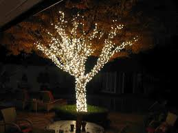 How To String Christmas Tree Lights by Outdoor Tree Lights Home Design Ideas And Pictures