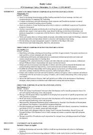 corporate resume exles corporate foundation relations resume sles velvet