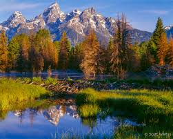 grand teton national park tetons scott walton photographs landscape and nature photography