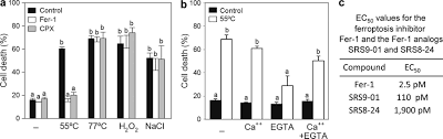heat stress induces ferroptosis like cell death in plants jcb
