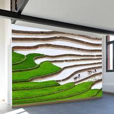 vietnamese terraced rice field wall mural decal 100