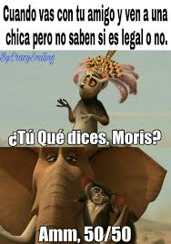 Memes Espanol - top memes de madagascar en espa祓ol memedroid