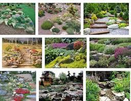 choosing a style of rock garden