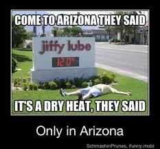 Arizona Memes - 65 best arizona humor images on pinterest arizona humor phoenix