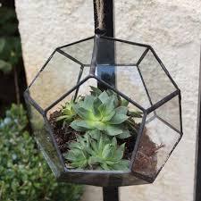 terrarium containers u2013 46 u0026 spruce home and garden