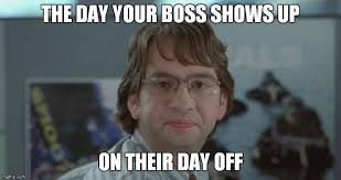 Best Office Memes - 15 of the very best office space memes to share hahahumor