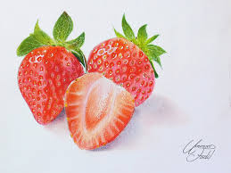 drawing fruits 3 strawberries colored pencils by f a d i l on