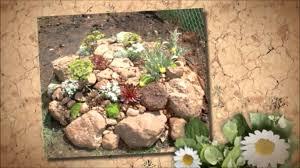 robust rock garden ideas then rock garden ideas for your backyard