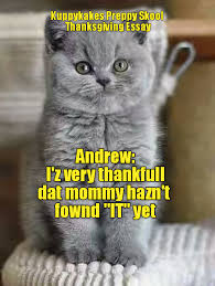 Thanksgiving Cat Meme - lolcats page 443 lol at funny cat memes funny cat pictures