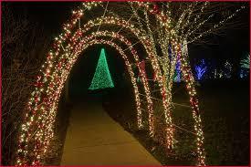 how to program christmas lights outdoor tree lights uk inviting how to program christmas lights