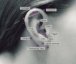 where to get cartilage earrings ear cartilage piercing types danfers and risks healing