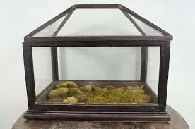 the antique of victorian terrarium u2014 tedx decors