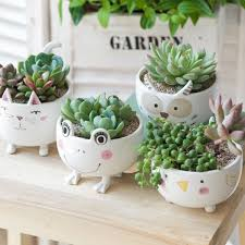 animal planter cute ceramic animal planter apollobox