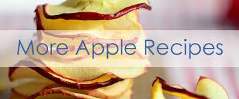 how to can applesauce jennifer u0027s kitchen