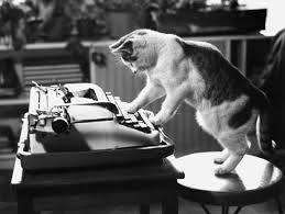 friday funday animals writing for nanowrimo the bewildered 20